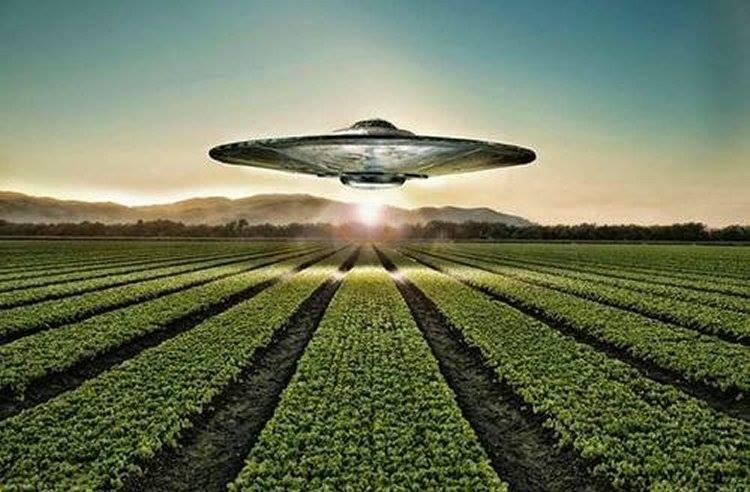 alien crop circles 2017 - photo #24